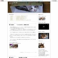 はなとゆめ+猫の本棚